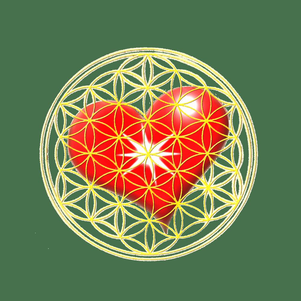 Floarea vietii inima